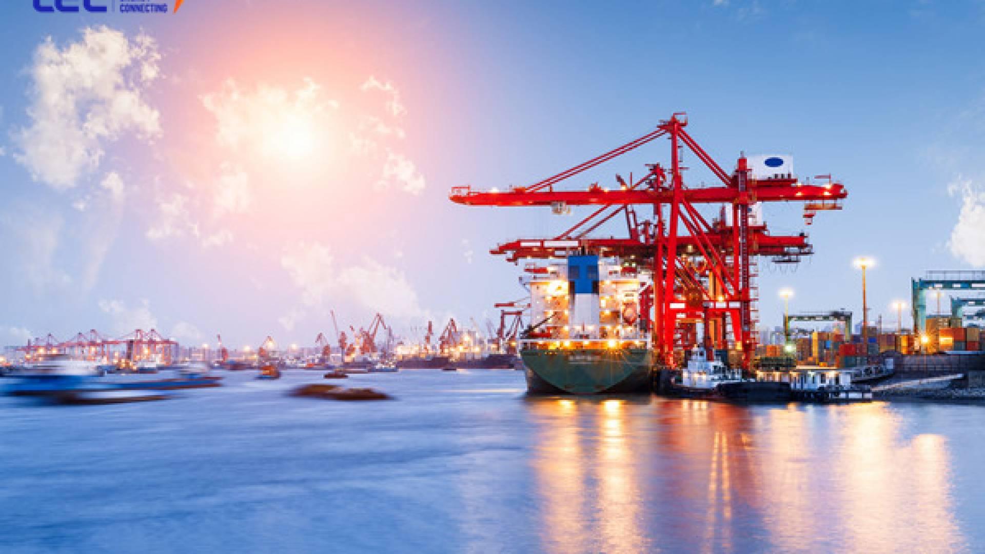 Tổng quan về mô hình dịch vụ cảng biển logistics